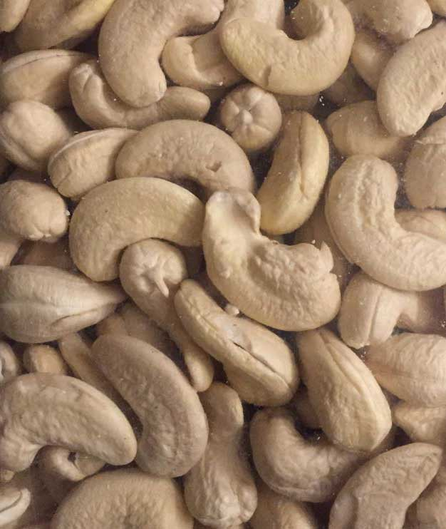 Top Quality Cashew - W 240